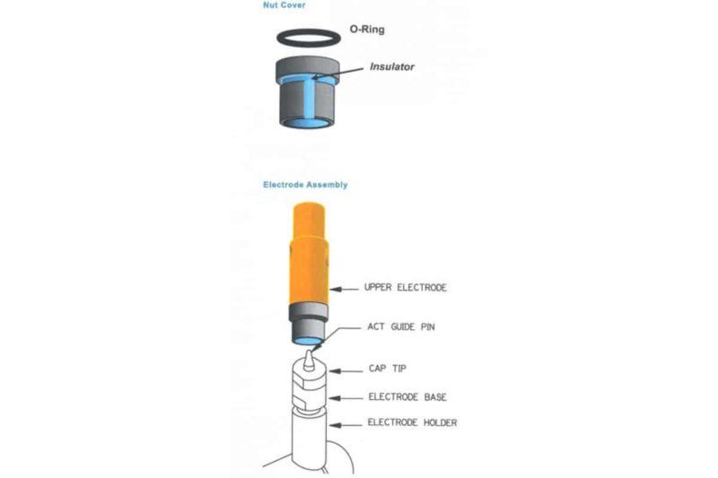 Nut Covers Diagram